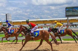 Đà Nẵng khẩn trương xây trường đua ngựa và sân golf gần 2 tỷ USD